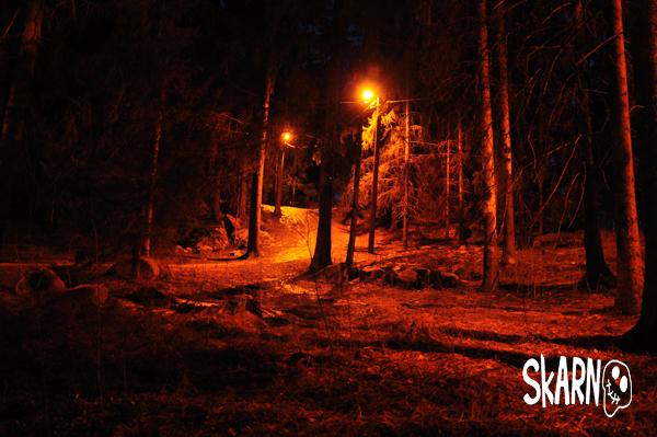 Fyndplatsen i skogen finkammas