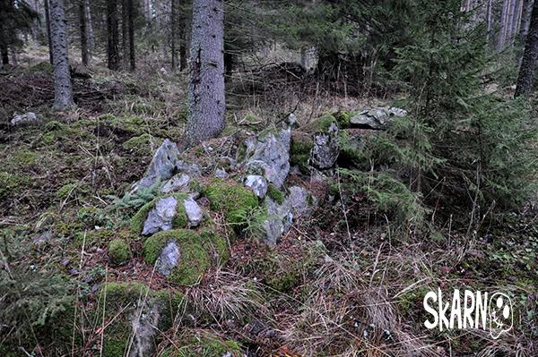 torpet i skogen